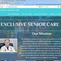 Dallas Website Design -sample1